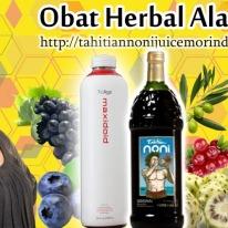 Obat Herbal Alami Terbaik
